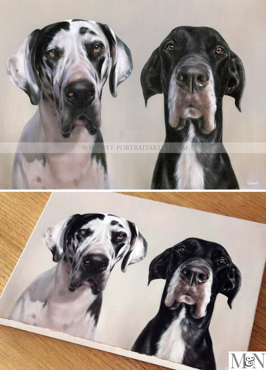 oil pet portraits