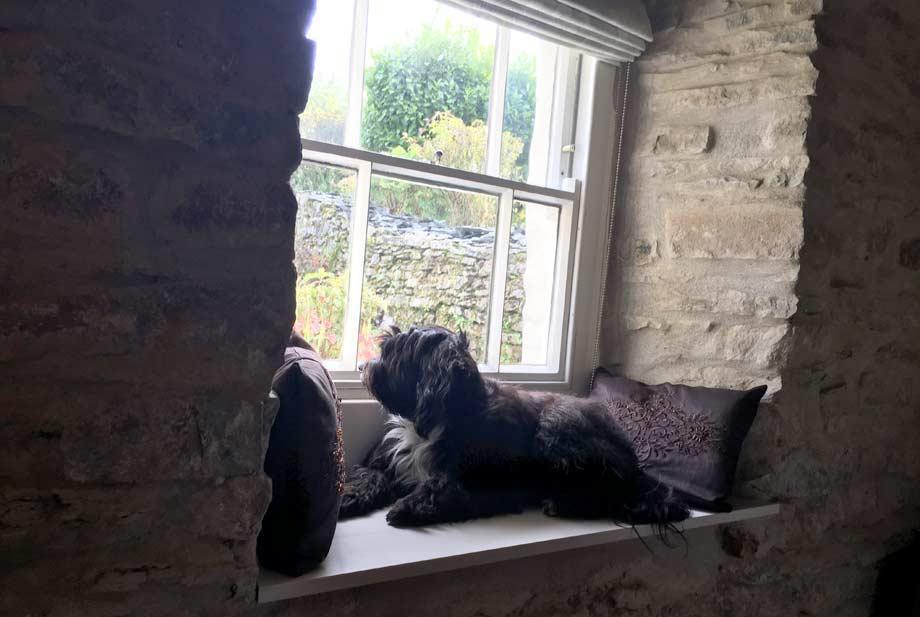 Pet Portrait Artists | Welsh Cottage Living Room